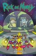 Rick and Morty 05