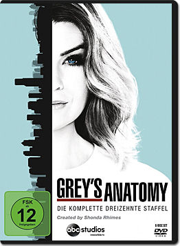 Grey's Anatomy: Staffel 13 (6 DVDs)