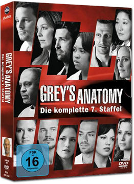 Grey's Anatomy: Staffel 07 Box (6 DVDs)