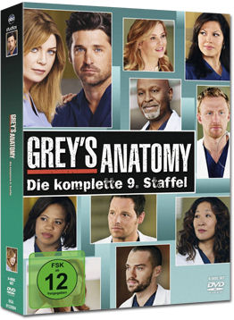 Grey's Anatomy: Staffel 09 Box (6 DVDs)