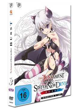 Testament of Sister New Devil (BURST) Vol. 3