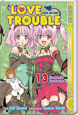Love Trouble, Band 13