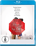 A Rainy Day in New York Blu-ray