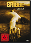 The Bridge: Season 1 Box (4 DVDs) (DVD Filme)