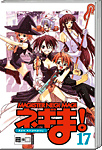 Magister Negi Magi, Band 17 (Manga)