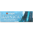 Magic Ravnicas Treue Booster Display -D-
