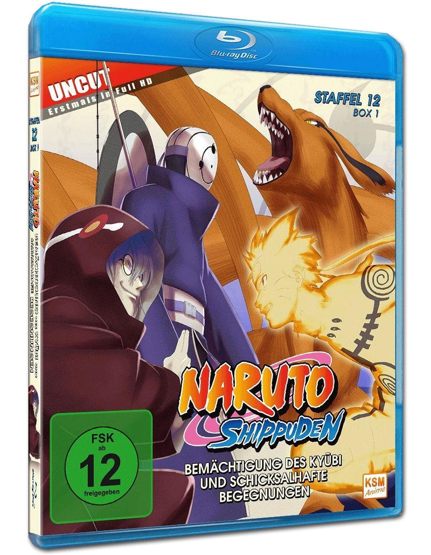 Naruto Shippuuden Staffel 12