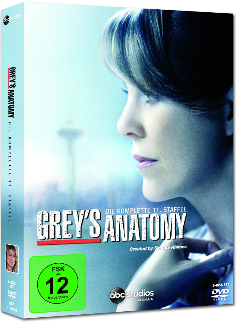 greys anatomy staffel 11