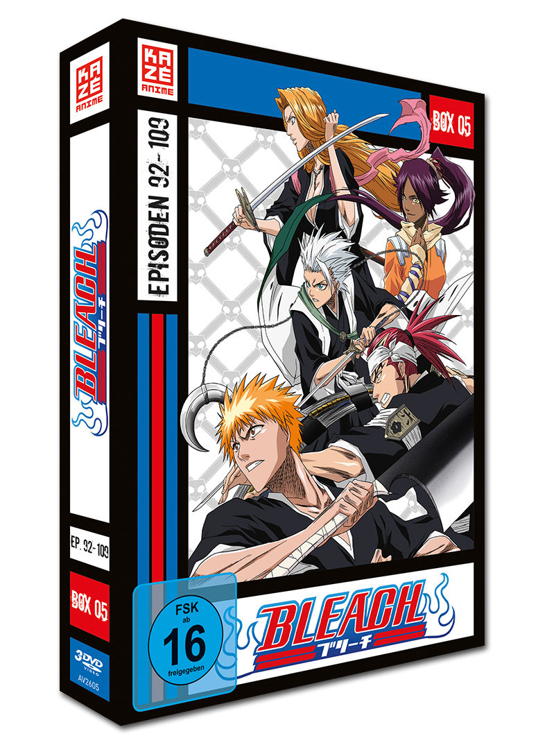 Bleach Die TV Serie