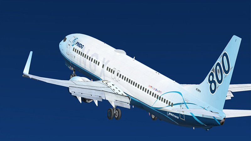 "Screenshot ""Flight Simulator X: PMDG 737 NGX"""