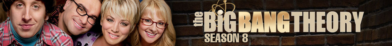 Serien Highlight: The Big Bang Theory - Staffel 8