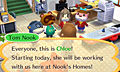 "Screenshot ""Animal Crossing: Happy Home Designer"""