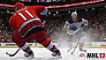 "Screenshot ""NHL 13"""