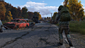 "Screenshot ""DayZ"""